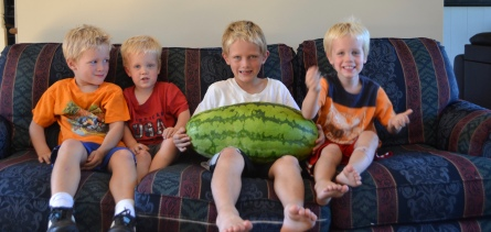 Our 30 pound watermelon